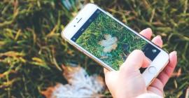 Instagram вводит опцию ответа на Сториз с GIF