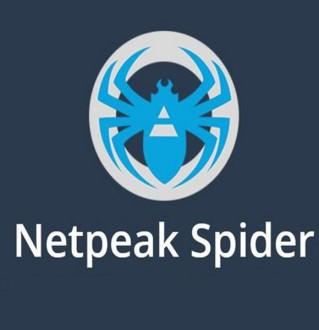 Обзор SEO-комбайна Netspeak Spider — инструкция и отзыв