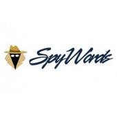 Шпионский SEO-сервис SpyWords: как пользоваться + промокод