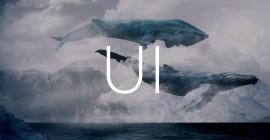Все об UI-китах