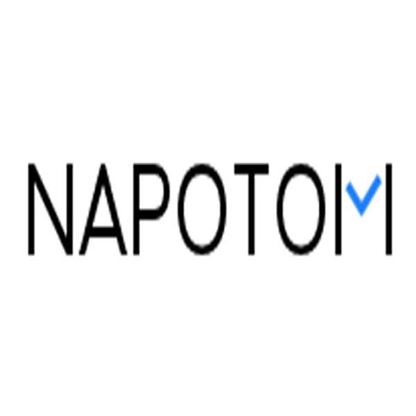 Аналоги сервиса Napotom