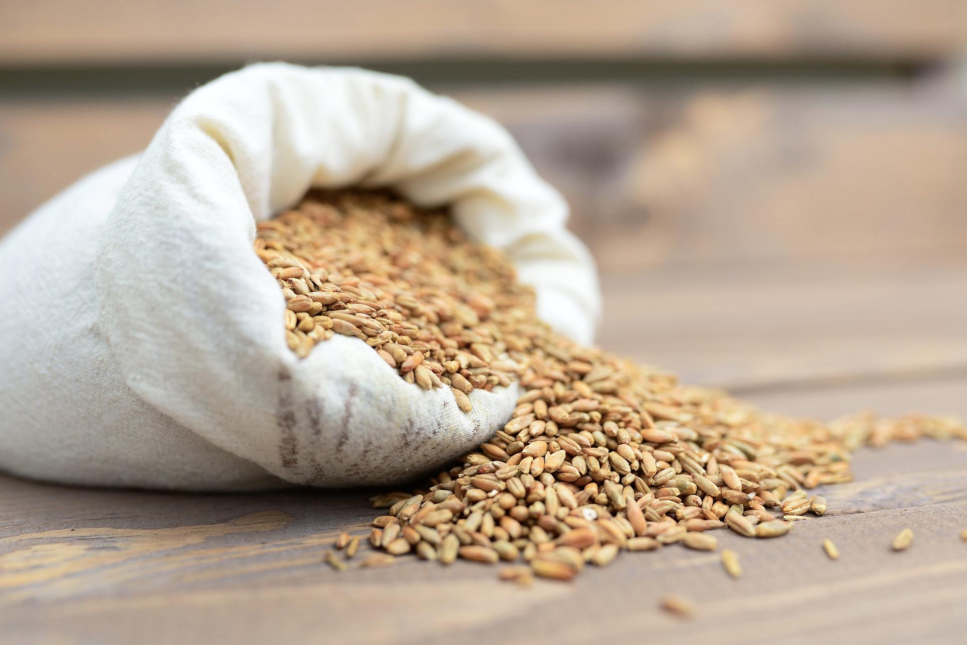 Зарабатываем на продаже зерна - 1 000 000 рублей в кармане!