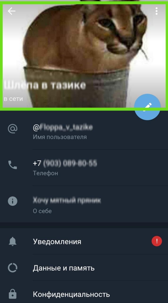 IMG_20210621_115759.jpg